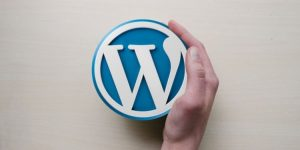 Cambiar tema WordPress