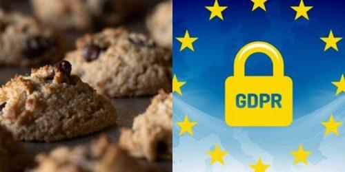Pack WordPress: Cookies + RGPD