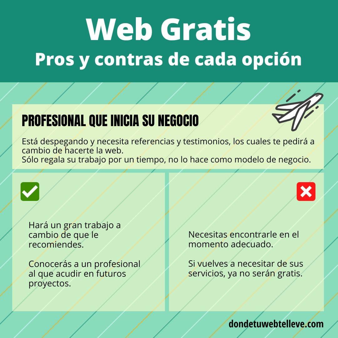 Infografía: Pros y contras de profesional que hace tu web gratis